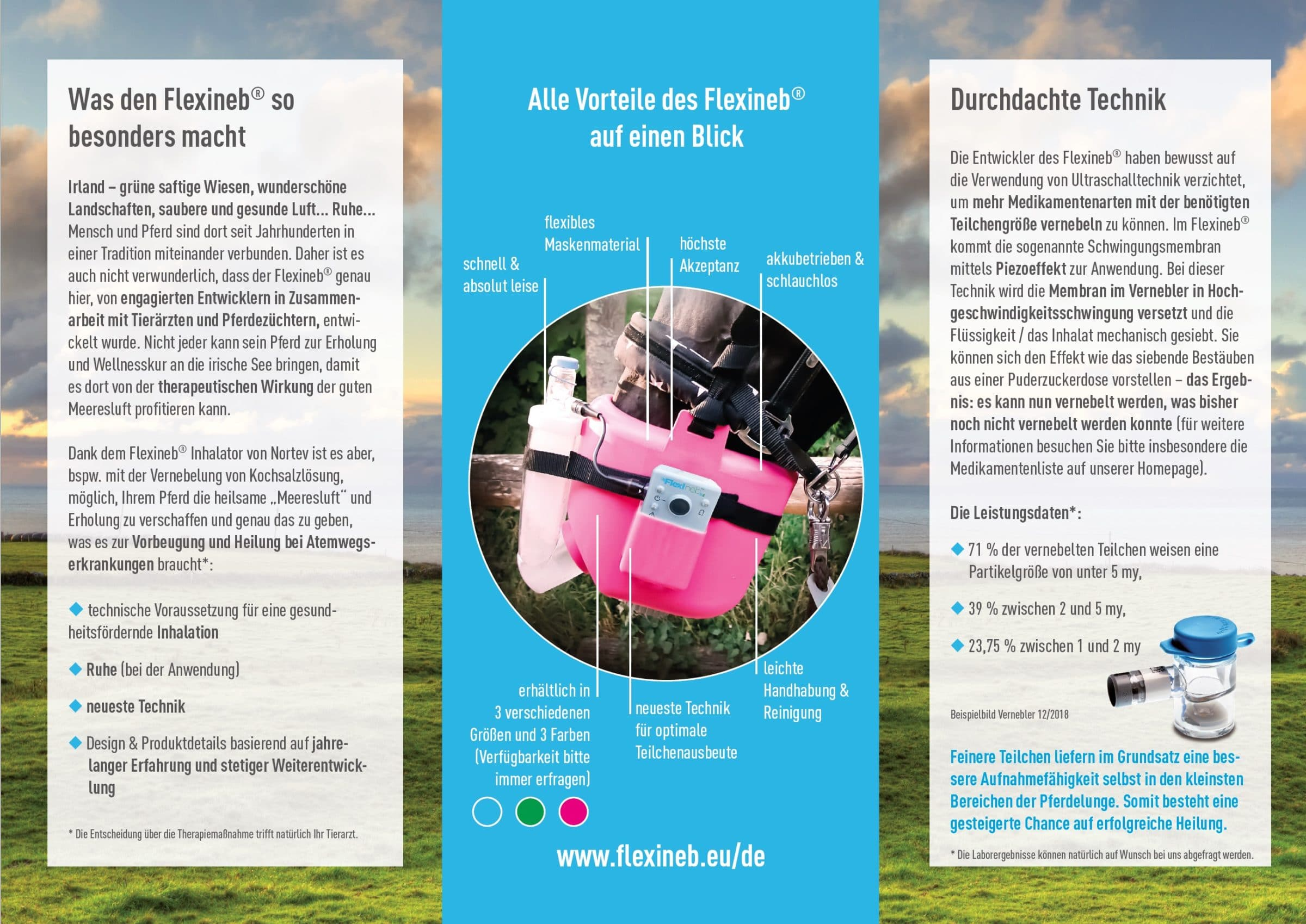 Flyer Flexineb De 04 19 2