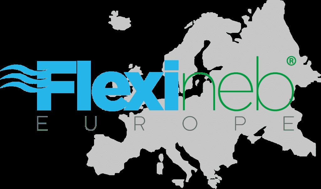 Flexineb Europe Logo 1024x604
